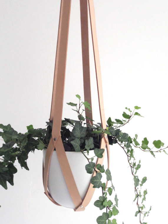 Interior accessories hanging planter